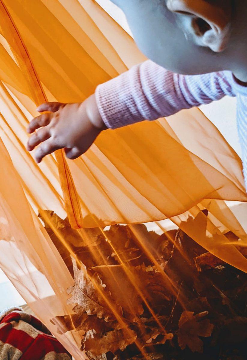 activité-enfants-crèche-forêt8